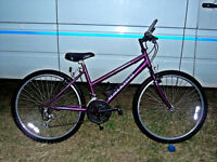 LADIES RALEIGH MAX MOUNTAIN BIKE FULLY SERVICED READY TO GO TIDY BIKE
