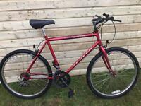 adults appollo lazer mountain bike