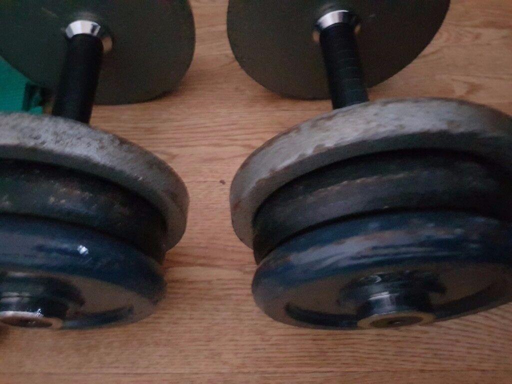 Pair of 16.5kg fixed dumbbells.33kg total