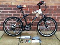 Childrens Raleigh Hot Rod Mountain Bike