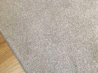 Large light grey rug