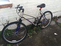 Mountain bike + lights + locket