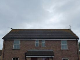 Two Bedroom Apartment to Let in Ballywalter - Unfurnished