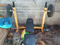olympic bar, adj weights bench inc leg extension, 140kg of plates, 3 dumbell sets (12k to 32kg)