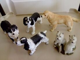 Ornamental Dog Collection