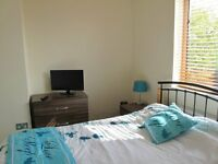 Room in Shared House Beautiful large room for working Single professionals