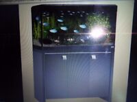 200 Ltr. Fluval Roma fish tank with black cabinet