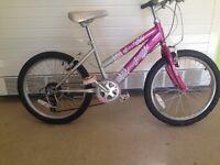 Lovely kid girls Raleigh Krush bicycle
