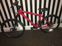 Raleigh AT30 mountain bike