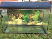 Fish Tank for sale. Length 77cms, 31cms depth, 46cms height.