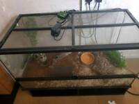 Corn snake and viv OPEN TO OFFERS