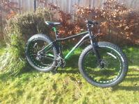 fatbike wazoo new grate winter/beach bike fat bike