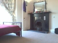 Roommate wanted for bright, spacious double room in Morningside beginning from August