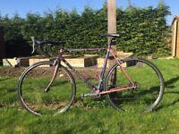 Raleigh Dynatech 725i Titanium Bicycle