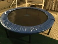 Mini trampoline. 48in. Excellent condition. Reason for selling no room for it.