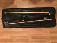 Professional billiard set
