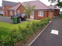 2 bed bungalow wythall birmingham homeswap to devon