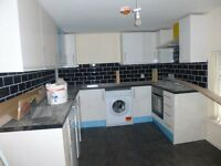 Spacious 1 Bedroom Flat - Newly Refurbished to a High Standard - New Appliances and Furniture