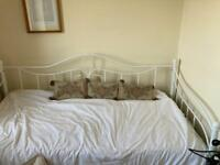White metal romantic day bed frame with trundle to make a double bed sofa guest bed