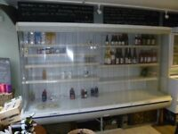 Commercial Display Chiller for sale - Meat Dairy Drinks Display Chiller