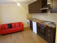Stunning One Bedroom Flat In Barking IG11 To Rent Now! Close To Amenities !