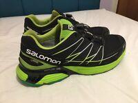 Salomon running/hiking trainers.