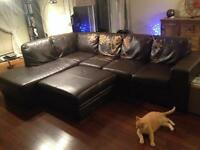 Contemporary comfy sectional damaged by freaking cat