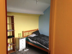 Cheap and large double attic room in S10. Walking distance from the Uni of Sheffield