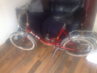 vintage puch pic nic shopper