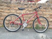 RALEIGH FIREFLY SERIES ONE MTB 16.5 INCH CROMOLLY FRAME