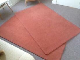 Rug/Carpets