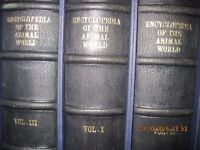Leather bound encyclopedias
