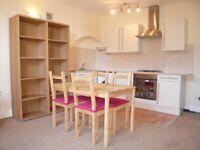 Spacious ONE DOUBLE bedroom apartment - Electric Avenue, Brixton, London SW9