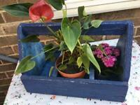 Vintage Wooden Carry Box/ Tool Box/ Garden Plant Trough