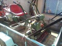 two cylinder mowers petrol
