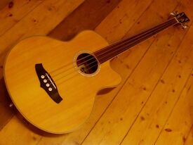 fretless bass acoustic electro bass tanglewood