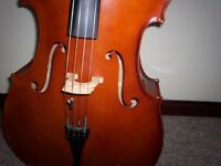 Stagg 4/4 Cello c/w Case