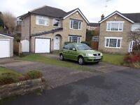 Volkswagen Polo 1.0 5 Door**Low Mileage** Full Hisory** Electric Sunroof* Rare Colour**