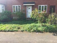 Free garden shrubs