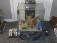 FISH TANK WITH TWIN LIGHT PUMPS PLANTS AND MORE £55