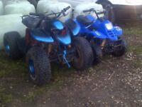 quads bikes