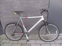Raleigh city bicycle