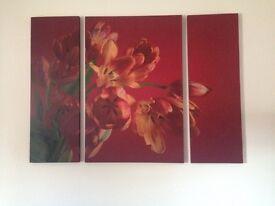 Red tulip, 3 piece canvas, excellent condition