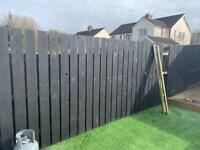 Mix of 5 & 6ft fence boards painted black