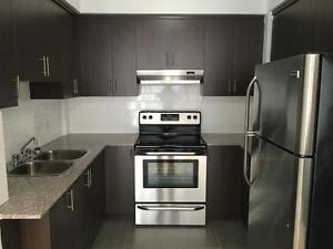LARGE! BRAND NEW - FULLY RENOVATED 1 BEDROOM