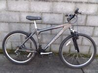 mens bike lincoln 26''