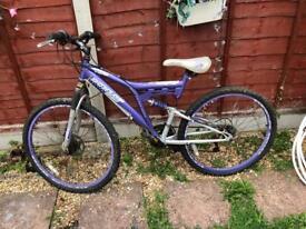 Purple Dunlop bike