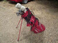 Ladies Mizuno Irons & Titliest Golf Bag