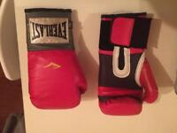 Everlast 10oz boxing gloves