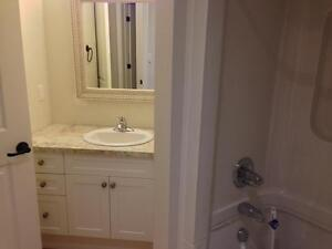 FULLY RENOVATED 2 BD 2 BATH APT! STEPS TO QUEEN'S- 432 UNION ST Kingston Kingston Area image 10